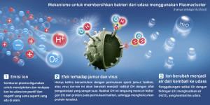 bakteri udara